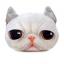(พร้อมส่ง) หมอนหน้าน้องแมว 3 มิติ (50*40 cm.) thumbnail 5