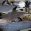 โมเดลปลาฉลาม Shark แบบยางอ่อนนุ่มนิ่ม ตั้งโชว์สวย ขนาดใหญ่ 14 นิ้ว thumbnail 8