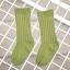ถุงเท้ายาว สีเขียว แพ็ค 12 คู่ ไซส์ L (อายุประมาณ 6-8 ปี) thumbnail 1