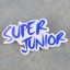 เข็มกลัด superjunior thumbnail 1