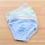 กางเกงในเด็ก คละสี แพ็ค 20 ตัว ไซส์ XL อายุ 2-3 ปี thumbnail 1