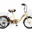 จักรยานสามล้อ 20นิ้ว UMEKO TRIVELO 7เกียร์ พร้อมตะกร้าหน้าและหลัง thumbnail 2