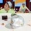 หมวก VEIL สีเงินเมทัลลิค thumbnail 1