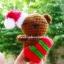 หมี - ชุดคริสมาส thumbnail 1