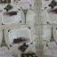 กระดาษแนปกิ้น 13x13 thumbnail 10