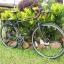 จักรยานทัวริ่ง FUJI Touring เกียร์ชิมาโน่ 27 สปีด 2016 thumbnail 37
