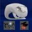 ไฟซิลิโคน 2 เลด(ติดกัน) Silicone 2 led frog light thumbnail 12