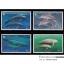 แสตมป์ชุด สัตว์ทะเลเลี้ยงลูกด้วยนม ปีทะเลสากล ปี 2541 (ยังไม่ใช้) thumbnail 1