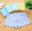 กางเกงในเด็ก คละสี แพ็ค 24 ตัว ไซส์ M อายุ3-4 ปี thumbnail 1