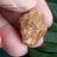 หินรูปทรงประหลาดจากทะเลทรายโกบี GOBI Fish Roe Stone #GOBI008 thumbnail 5