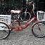 จักรยานสามล้อ 20นิ้ว UMEKO TRIVELO 7เกียร์ พร้อมตะกร้าหน้าและหลัง thumbnail 5