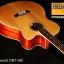 Tangle wood DBT-AB thumbnail 2