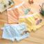 กางเกงในเด็ก คละสี (1 ถุง มี 4 ตัว แพ็ค 5 รวม 20ตัว) ไซส์ L อายุ 4-5 ปี thumbnail 3