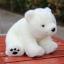 ตุ๊กตาหมีขาวนั่ง Amangs (ขนาด 28 cm.) thumbnail 3
