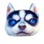(พร้อมส่ง) หมอนหน้าน้องหมา 3 มิติ (50*40 cm.) thumbnail 6