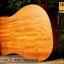 Veelah V3-DCE with Hardcase thumbnail 13