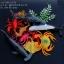 โมเดลสัตว์ทะเล Sea Animal 9 ชนิด thumbnail 1