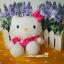 เซ็ตคู่ 2 ชิ้น เฮลโหลคิตตี้&แดเนียล Mcdonald's Hello Kitty & Dear Daniel Chinese Costume ( wisdom of Love 1999) thumbnail 3