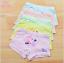 กางเกงในเด็ก คละสี แพ็ค 20 ตัว ไซส์ M อายุ 2-3 ปี thumbnail 1
