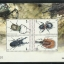 ชุดชีทแสตมป์ชุด แมลง ชุดที่ 2 ปี 2544 (ยังไม่ใช้) thumbnail 1