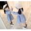 ชุดเดรสแขนยาวลายทางสีฟ้าแต่งแมวที่หน้าอก [size 2y-3y-4y-5y-6y] thumbnail 4