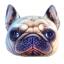 (พร้อมส่ง) หมอนหน้าน้องหมา 3 มิติ (50*40 cm.) thumbnail 3