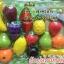 ผักผลไม้หั่นได้ 22 ชิ้น (10ชนิดไม่ซ้ำ) thumbnail 1