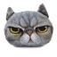 (พร้อมส่ง) หมอนหน้าน้องแมว 3 มิติ (50*40 cm.) thumbnail 6
