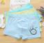กางเกงในเด็ก คละสี แพ็ค 20 ตัว ไซส์ XXL (80 ~ 90 กก.) thumbnail 1