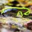 BRIKO แว่น, CYCLOPE PHOTO, เลนส์ปรับแสงได้ (Made in Italy), 329260 thumbnail 3