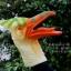 โมเดล ถุงมือยาง หัวนกไดโนเสาร์ thumbnail 1