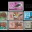 แสตมป์มองโกเลีย ชุด CAPEX 78 ANIMALS สัตว์ป่า ปี 1978 เก่า สวย หายาก - MONGOLIA thumbnail 1