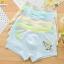 กางเกงในเด็ก คละสี แพ็ค 20 ตัว ไซส์ XL อายุ 5-6 ปี thumbnail 2