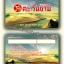 ตัวอย่างบัตร ของลูกค้า บัตรพลาสติก thumbnail 5