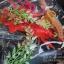 โมเดลสัตว์ทะเล Sea Animal 9 ชนิด thumbnail 3