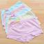 กางเกงในเด็ก คละสี แพ็ค 20 ตัว ไซส์ XXL อายุ 8-9 ปี thumbnail 1