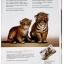 A4 Print True พิมพ์ถูก พิมพ์เร็ว พิมพ์ดี พิมพ์จริง thumbnail 2