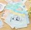 กางเกงในเด็ก คละสี แพ็ค 20 ตัว ไซส์ M อายุ2-3 ปี thumbnail 1