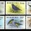 แสตมป์ แอนติกา บาบูด้า ชุด Birds นกนานาพันธุ์ ปี 1976 - Antigua and Barbuda thumbnail 1