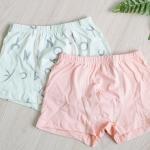 กางเกงใน ขาสั้นเด็กชาย แพ็คคู่ลาย Pink & Alphabet