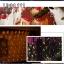ไฟตาข่าย LED ขนาดใหญ่ 3x3 m สีแดง (กระพริบ) thumbnail 18