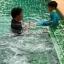 ชุดว่ายน้ำควบคุมอุณหภูมิ thumbnail 11