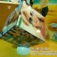 012-โฟโต้บอกซ์อะคริลิค 6x6 thumbnail 1