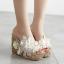รองเท้าส้นเตารีดส้นติดกากเพชรแน่นๆสีเงิน/ทอง/ขาว/ชมพู ไซต์ 34-39 thumbnail 6