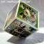 008-มิกซ์รูป โฟโต้บอกซ์ 4x4 thumbnail 1