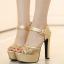 รองเท้าส้นสูงแต่งผ้าลูกไม้สวยสีเงิน/ทอง ไซต์ 34-39 thumbnail 2