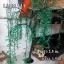 ไฟต้นหลิว LED 2.5 ม. สีเขียว thumbnail 7