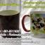 003 มิกซ์รูปและสกรีนแก้วเปลี่ยนสีเองได้ thumbnail 1