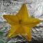 ไฟประดับ ไฟดาวใหญ่ สีเหลือง cl-024 thumbnail 5