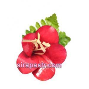 ดอกชบา-ประเทศมาเลเซีย (ช่อดอกไม้ติดเสื้อ) **สินค้าจำนวนจำกัด**
